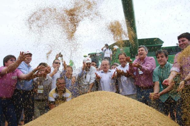 """""""O Estado tem dinheiro para os arrozeiros"""", diz Tarso Genro  Caroline Bicocchi/Divulgação"""