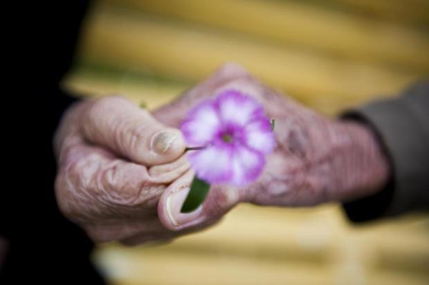 O enigma da longevidade não é por que morremos cedo, mas por que vivemos tanto, diz cientista Mateus Bruxel/Agencia RBS