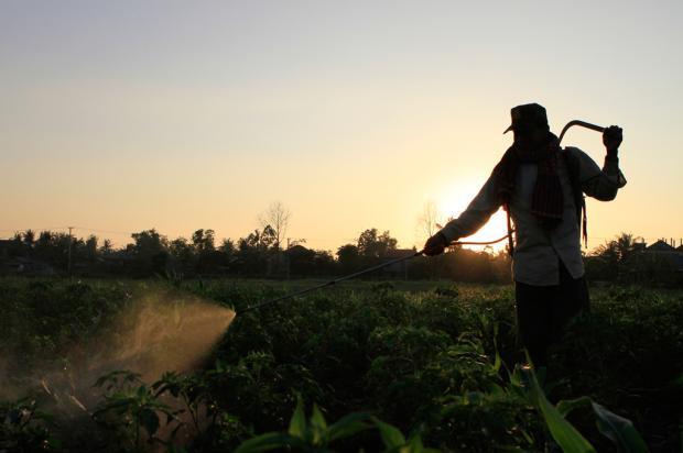 Nitrato de fertilizantes fica por décadas no solo, alerta estudo AP Photo/Heng Sinith/