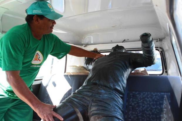 Estátua de Pelé é atropelada por caminhão desgovernado em Santos Nirley Sena/A Tribuna de Santos