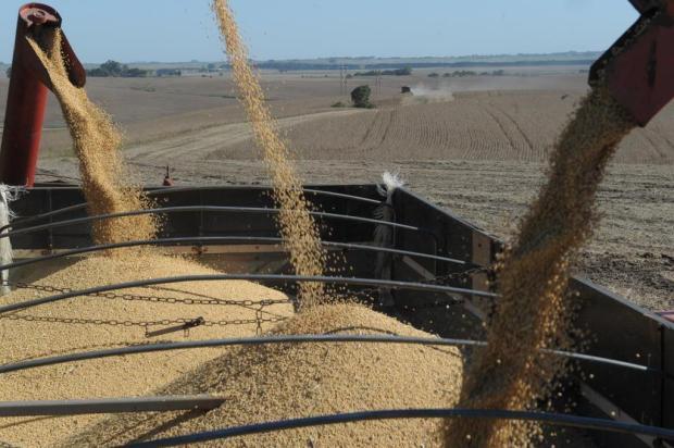 Produção de grãos crescerá até 10% na safra 2012/2013, informa Conab Jean Pimentel/Agencia RBS