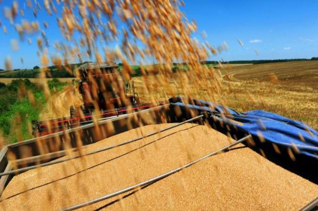 Conab aponta produção de 185,05 milhões de toneladas de grãos na safra 2012/2013 Charles Guerra/Agencia RBS