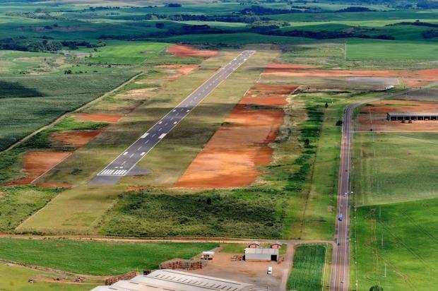 Quero-queros são os principais frequentadores de aeroporto em Vacaria Caco Konzen/Especial