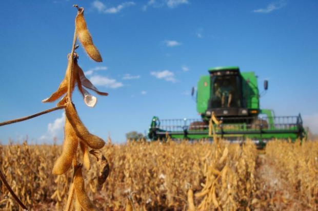 Estado dá a largada na colheita de soja Roberto Witter/Agência RBS