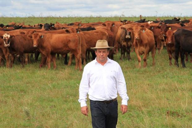 Venda de gado para exportação e para outros Estados mais do que triplicou  Claudio Gottfried/Especial