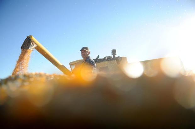 Exportações do agronegócio brasileiro crescem 4,2% e atingem US$ 100 bilhões na safra 2012/2013 Sirli Freitas/Agencia RBS