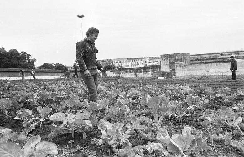 Presídio Central, 1981:imagem 2