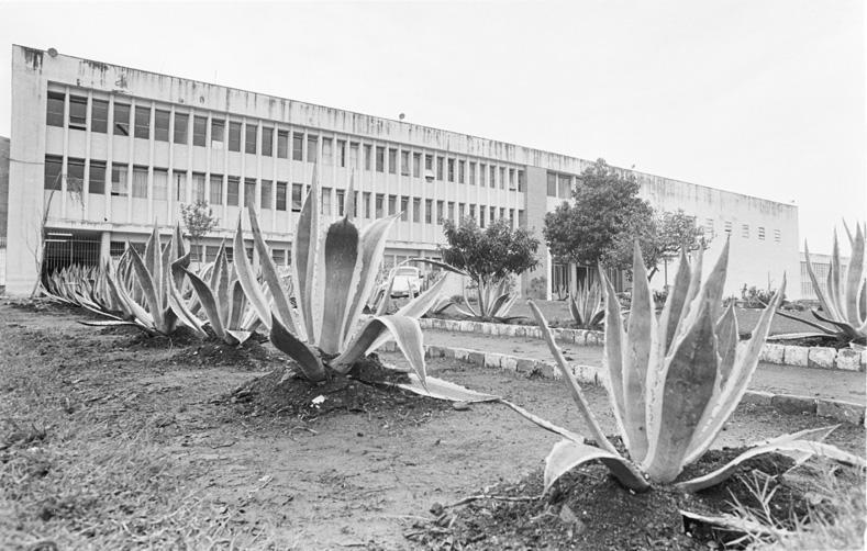 Presídio Central, 1981:imagem 3