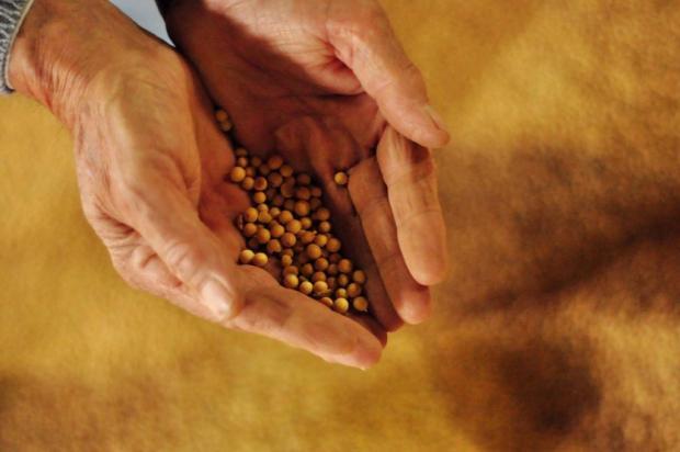 Próxima safra agrícola terá crédito total de R$ 70 bilhões Diogo Zanatta/Especial