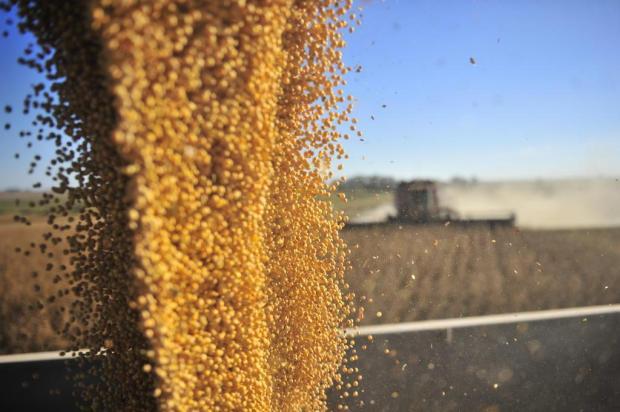 Puxada pela soja, exportações do Rio Grande do Sul crescem 29% em agosto Tadeu Vilani/Agencia RBS