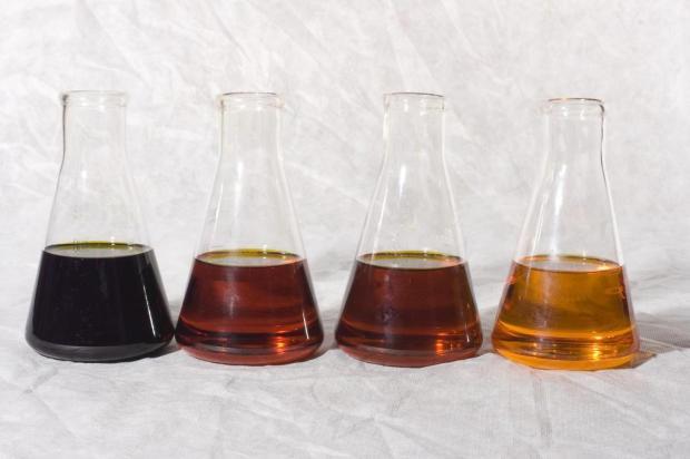 Uvas e frutas cítricas gaúchas são a base de produtos cosméticos e perfumes Divulgação/Ecocitrus