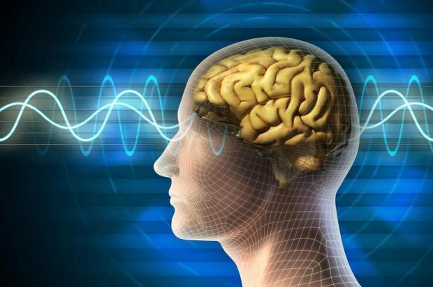 Cientistas descobrem estado de atividade no cérebro após morte cerebral Patrick Lewson/Morguefile