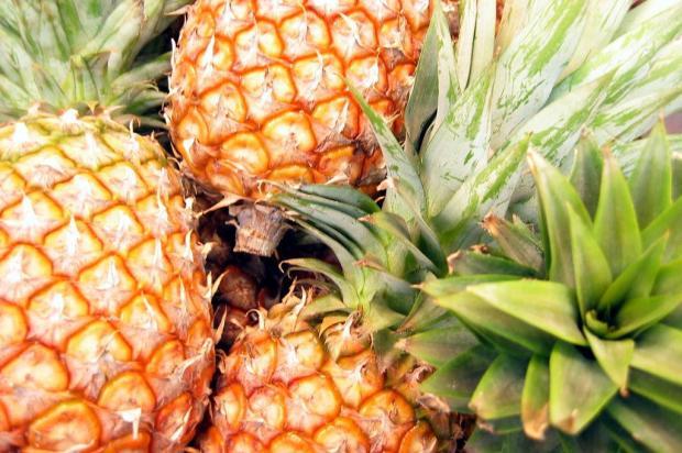 Conheça os benefícios do abacaxi Sxc/Divulgação