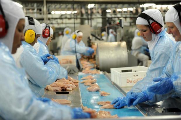 Gisele Loeblein: sobretaxa pode tirar espaço do frango brasileiro na África do Sul  Sirli Freitas/Agencia RBS