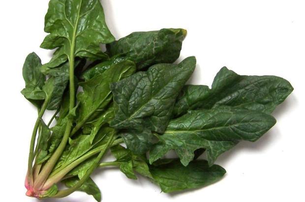 Conheça os dez alimentos que ajudam a combater a celulite Stock.Xchng/Divulgação