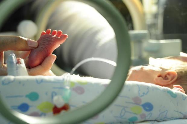 Exposição a composto quimíco usado em plásticos aumenta risco de nascimentos prematuros, aponta estudo Porthus Junior/Agencia RBS