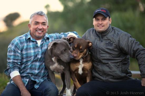 Após aprender técnica com apresentador do Animal Planet, gaúcho vira terapeuta canino e ministra workshop Arquivo Pessoal/Arquivo Pessoal