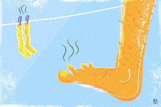 Queijos feitos com pele de axila e dedão do pé são exibidos em museu na Irlanda Henrique Tramontina/Arte ZH
