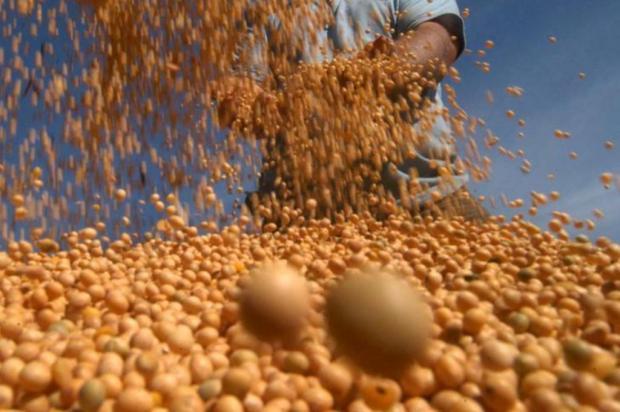Safra de grãos de 2014 deve ser a maior da história do Rio Grande do Sul Tadeu Vilani/Agencia RBS