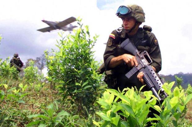 Por que a guerra às drogas faliu? Ver Descrição/Ver Descrição