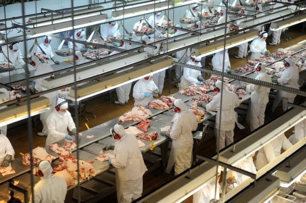 Indústria de carne suína busca manutenção de mercados compradores em 2014 Sirli Freitas/Agencia RBS