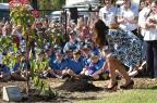 FOTO: Kate Middleton planta árvore na Austrália WILLIAM WEST / POOL/AFP