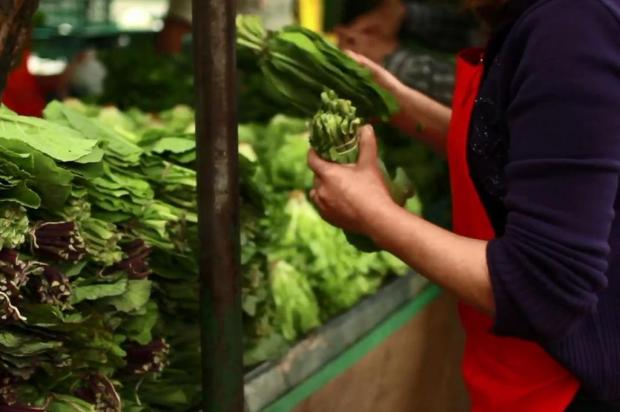 100% natural: as feiras especializadas em orgânicos em Porto Alegre reprodução/Coletivo Aura